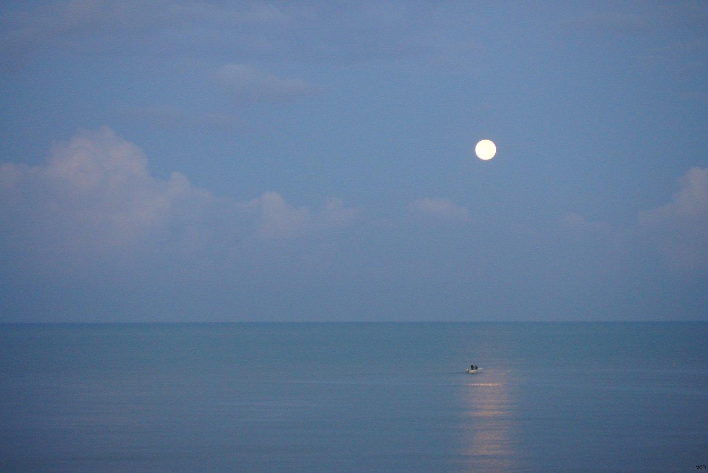 La lune au petit matin