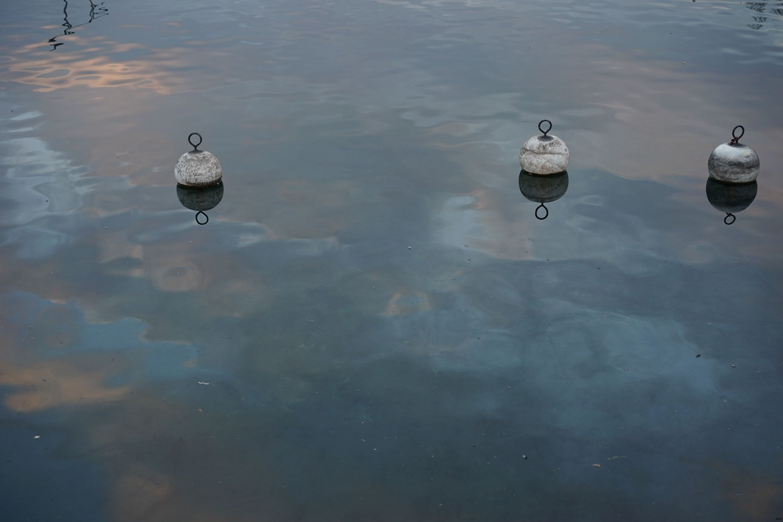 Lac saisi par le froid