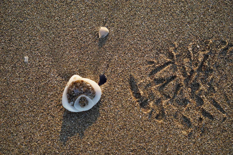 Jeu de sable (1)
