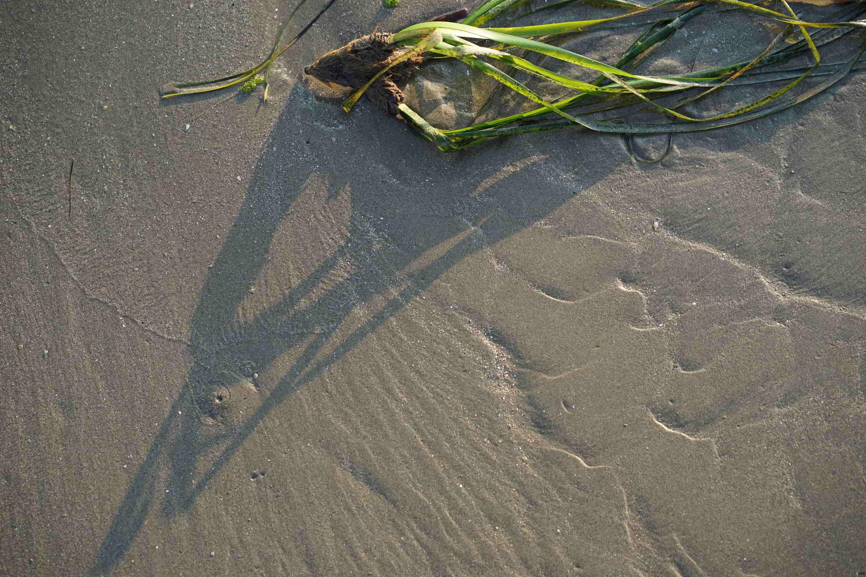 Jeu de sable (5)