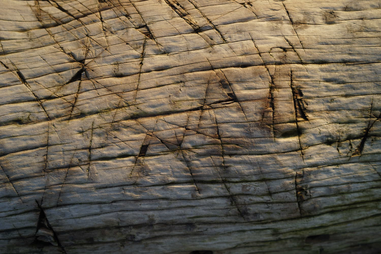 Marbrures sur bois de mer