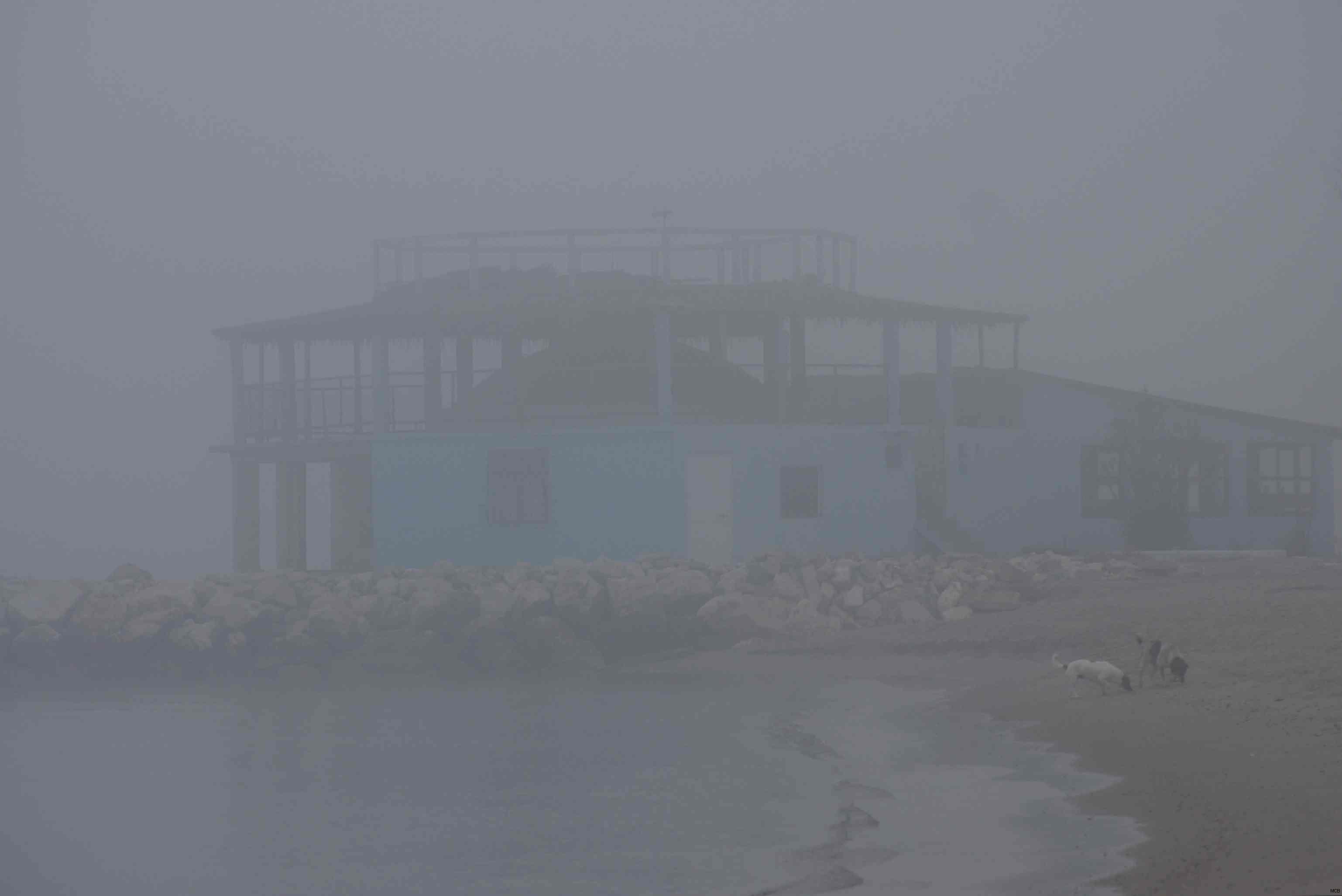 Brouillard sur mer