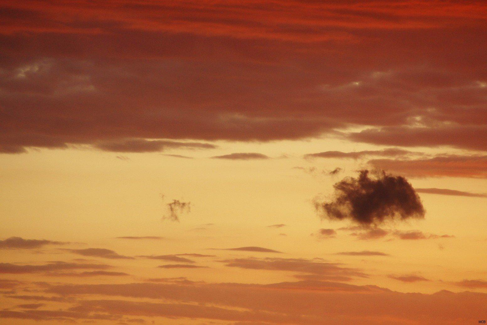 Hippopotame dans le ciel