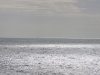 Horizon perle