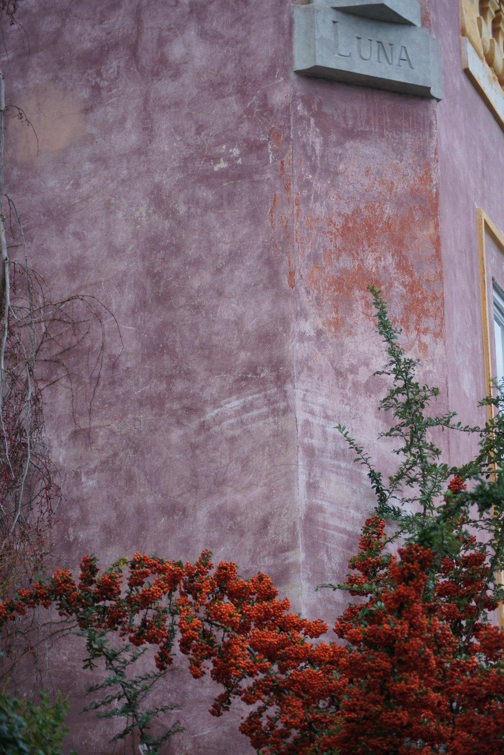Mur de Prague, 20 décembre 2014