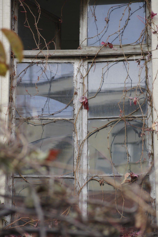 Mosaïque pour une fenêtre