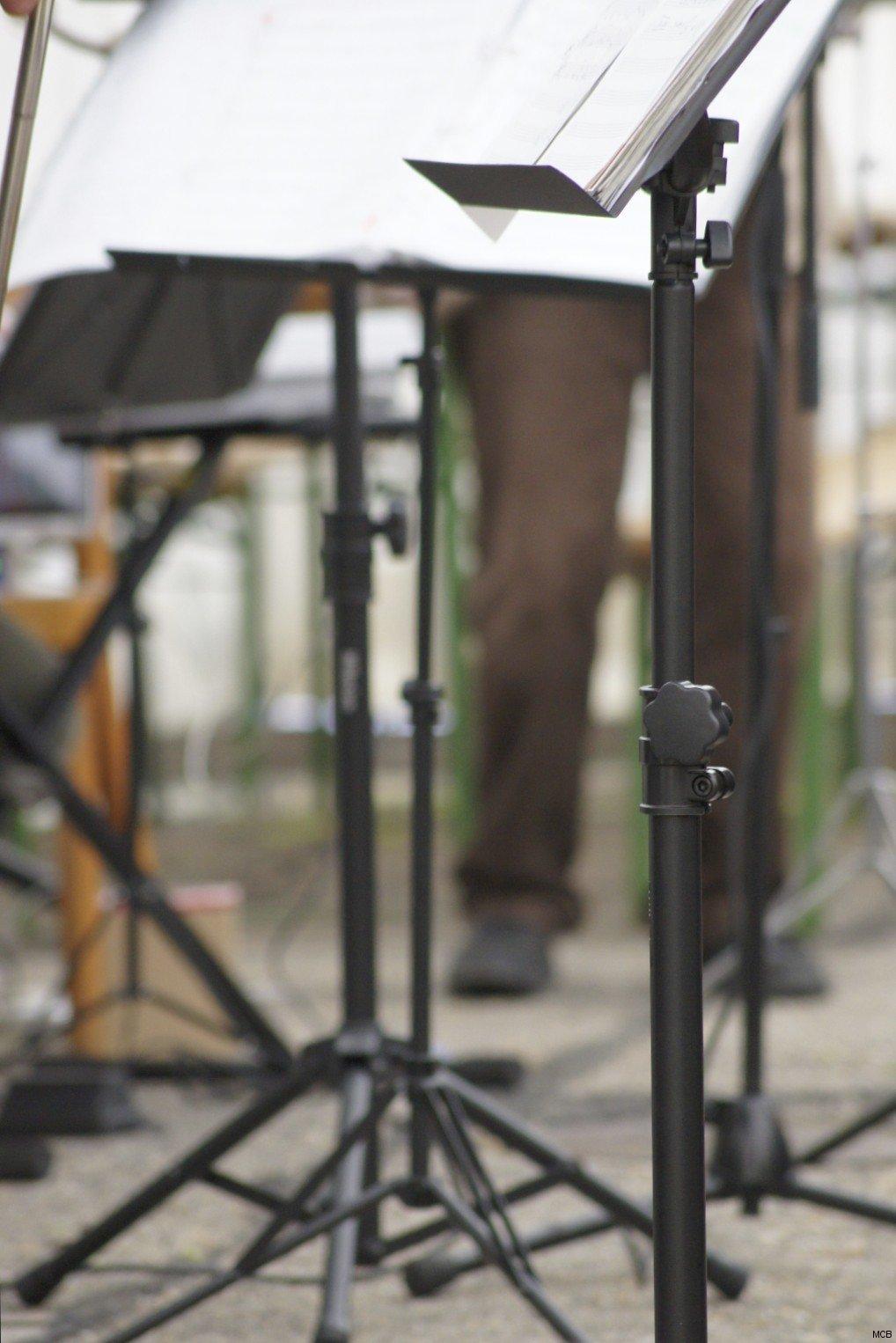 Musiciens, Fanfare du Loup