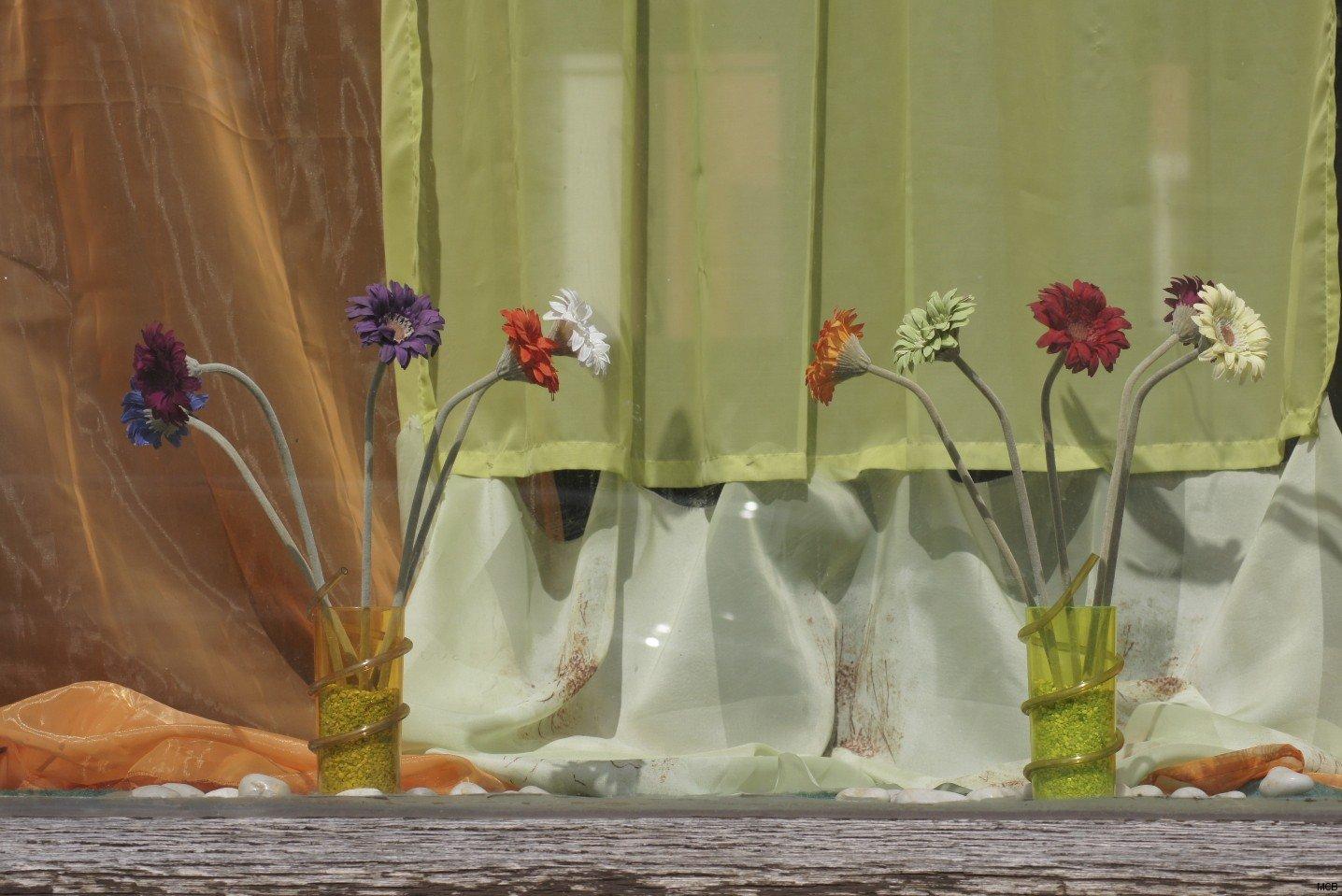 Vitrine en fleurs