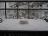 Cendrier face à l'hiver (3)