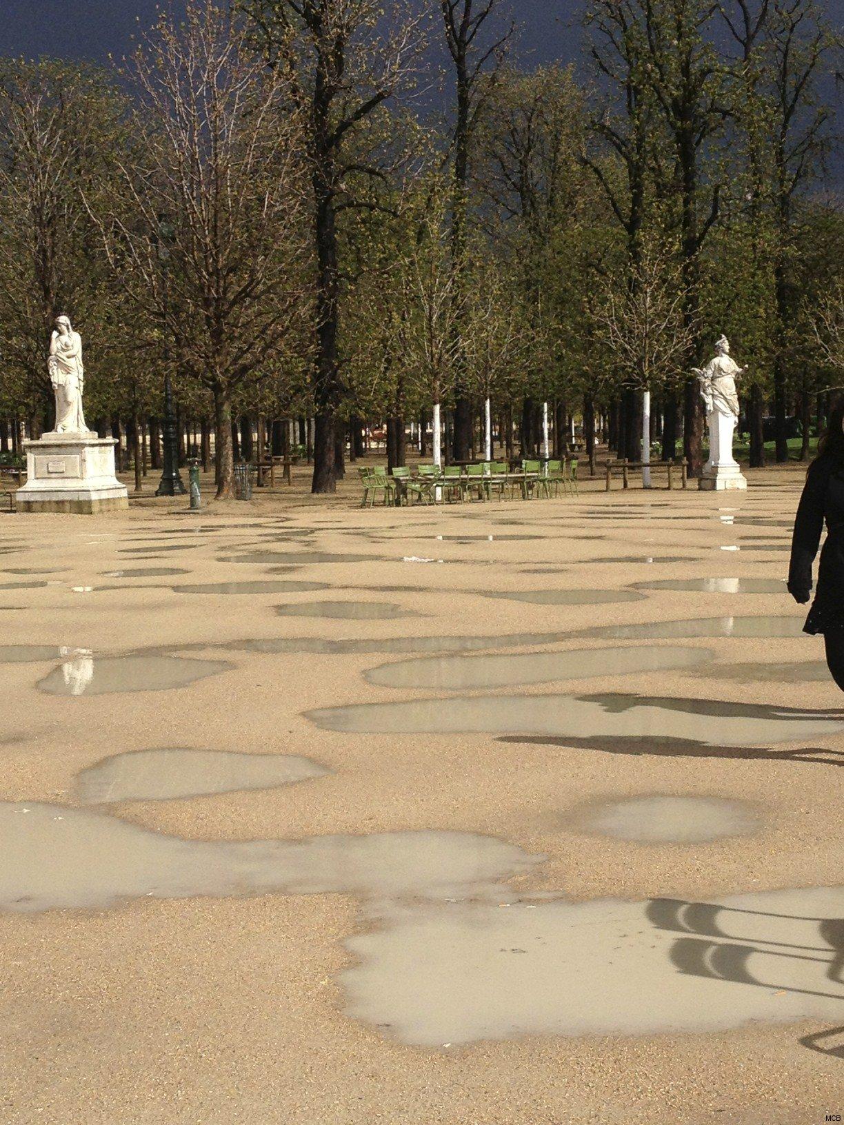 Jardin des Tuileries après la pluie