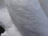 Blanc de cygne